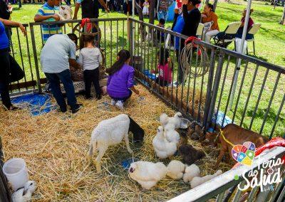 Feria de la Salud 2019 Grupo GAMI en Amphenol60